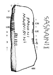 Ogam - Irski jezik - Zapis u kamenu