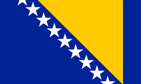Prevodi bosanski jezik